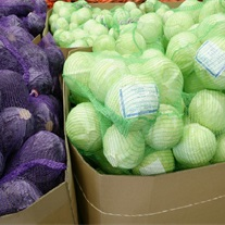 cabbage - net bags